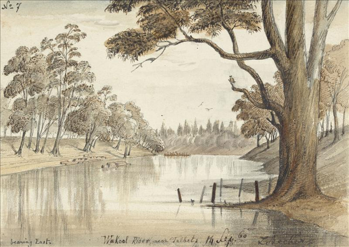 Wakool River, near Talbets by Ludwig Becker