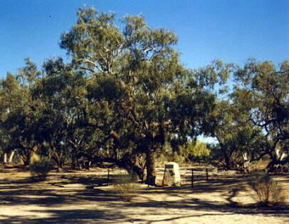 Burke's grave at Coopers Creek.